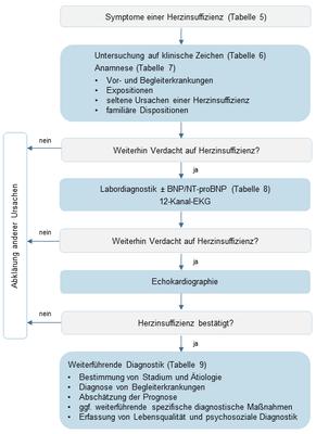 abbildung-3-klinischer-algorithmus-zur-diagnostik-der-chronischen-herzinsuffizienz.png